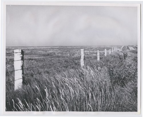 Stone fence post, Ness or Rush County, Kansas - Page