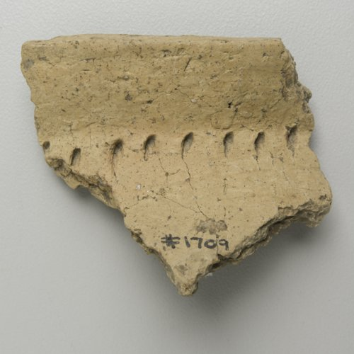 Kansas City Hopewell Rim Sherds - Page