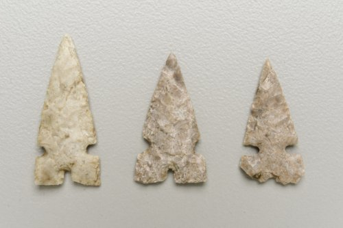 Harrell Arrow Points from the Hallman site - Page