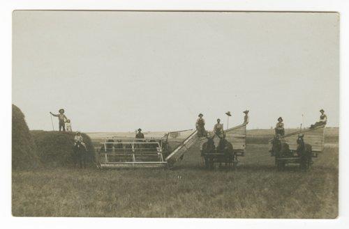 Harvesting, Norton County, Kansas - Page