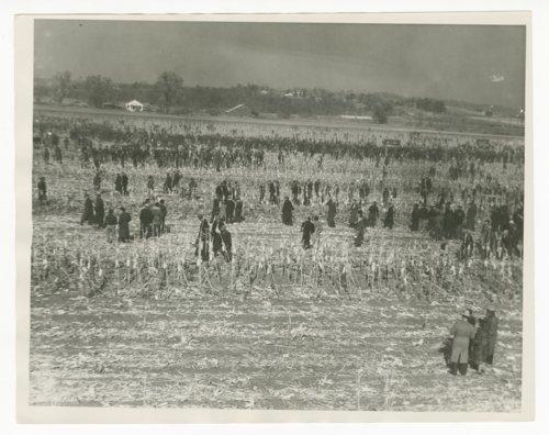 National Corn Husking contest near Topeka, Kansas - Page