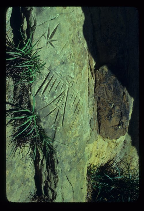 Petroglyphs from Ellsworth County - Page