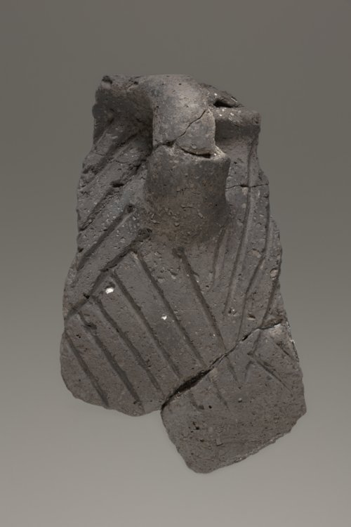 Decorated Ceramic Pot Sherds from the Minneapolis Site, 14OT5 - Page