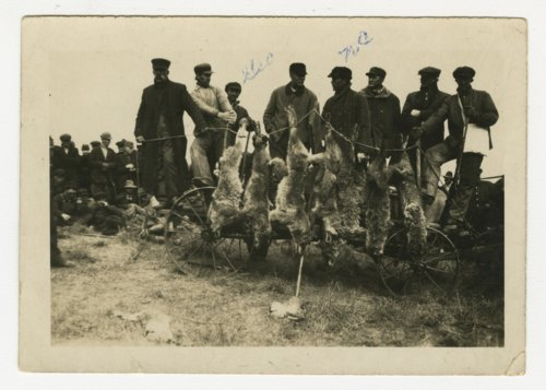 Coyote hunters in Wabaunsee County, Kansas - Page