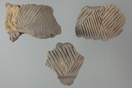Pottery from Pawnee Indian Village, 14RP1 - Page