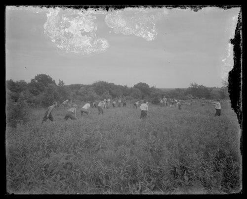 Boys playing baseball in Shawnee County, Kansas - Page