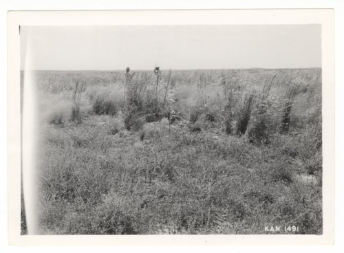 Land conservation efforts near Elkhart, Morton County, Kansas - Page