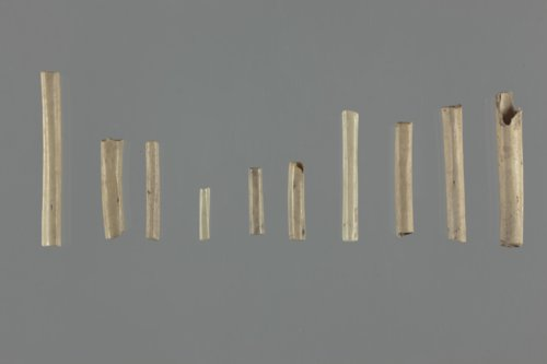 Bone Beads from the Saxman Site, 14RC301 - Page