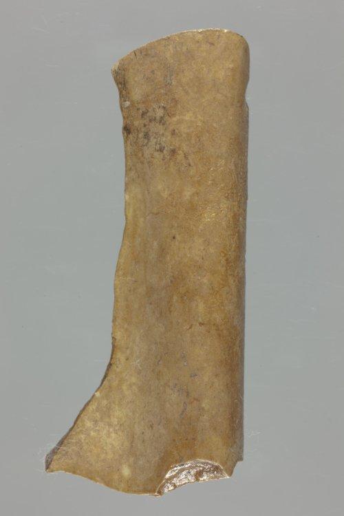 Modified Bone Tool - Page