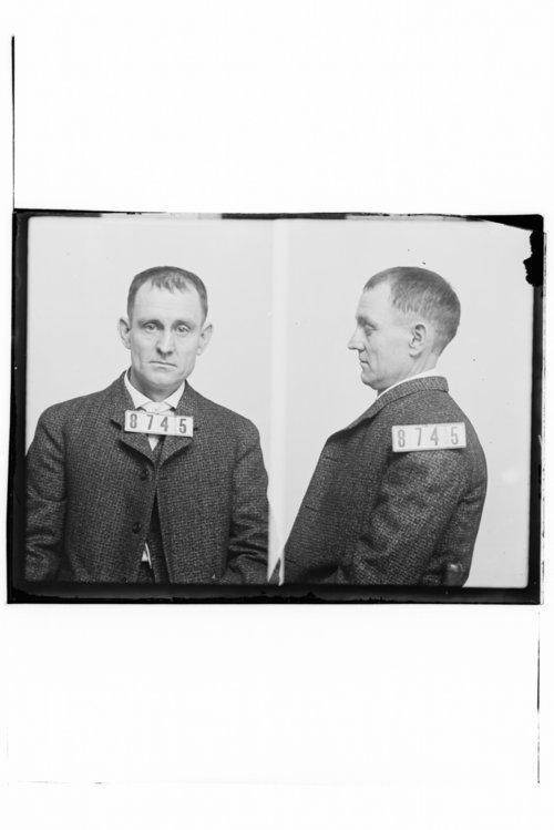 James Hill and Ellis Kellar, Prisoner 8745, Kansas State Penitentiary - Page