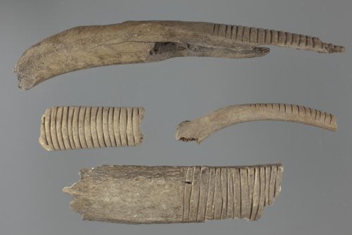 Bone Rasps from the Saxman Site, 14RC301 - Page