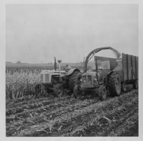 Silage harvest, Saline County - Page