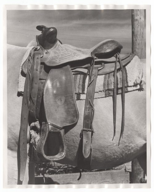 Saddle used on the Bob Perry Ranch, Saline County, Kansas - Page