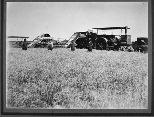 Hodgeman County, Kansas, harvest scene - Page