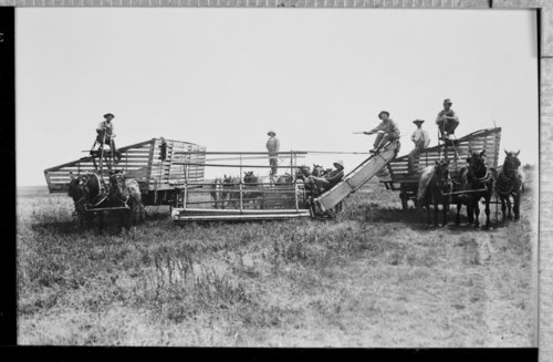 Harvest crew, Hodgeman County, Kansas - Page