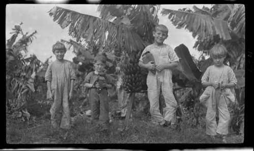 Children and Bananas, Hawaii - Page
