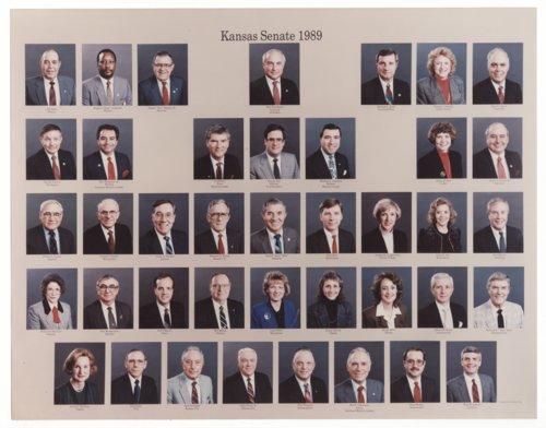 1989 Kansas State Senate - Page