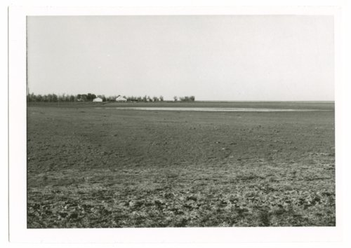 A field flooded after a rain, Greeley County, Kansas - Page