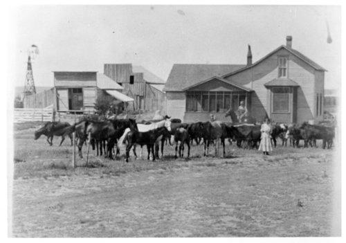 Bob Eadie ranch, Greeley County, Kansas - Page