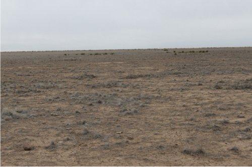 Santa Fe Trail - Cimarron National Grassland Segment 2 - Page