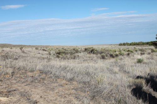 Santa Fe Trail - Cimarron National Grassland Segment 3 - Page