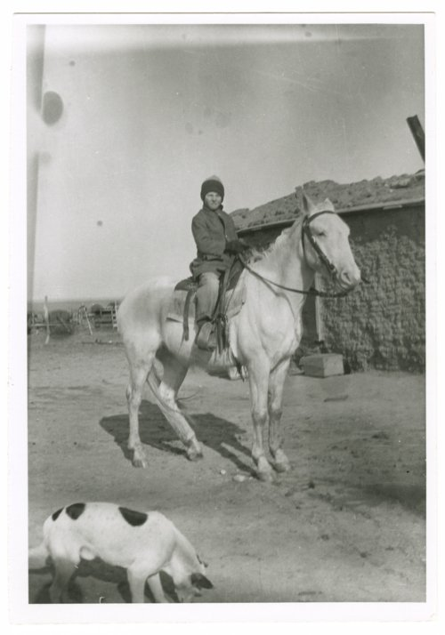 A boy on horseback, Greeley County, Kansas - Page