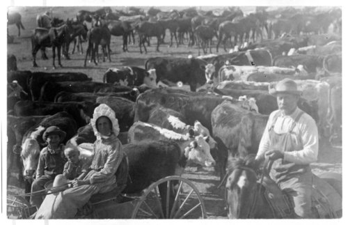 The Kuttler ranch, Greeley County, Kansas - Page