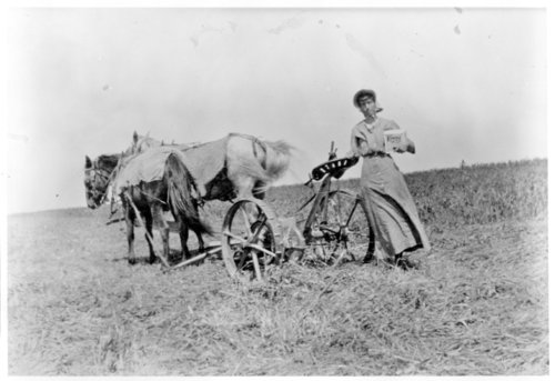 Anna M. Holfman stands by a horse-drawn scythe, Greeley County, Kansas - Page