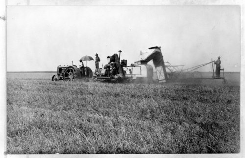 Combining wheat, Greeley County, Kansas - Page