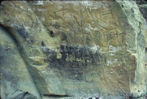 Petroglyphs from 14OT315 - Page