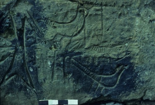 Petroglyphs from the Spriggs Rock Site - Page