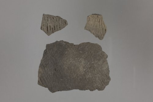 Pottery Sherds from Osborne County - Page