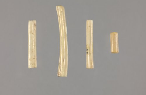 Bone Beads from the Sharps Creek Site, 14MP408 - Page