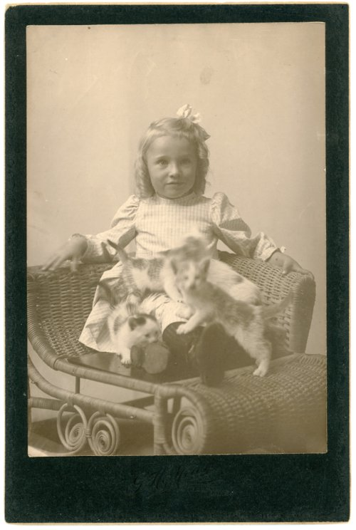 Cabinet card of Laura Palenske - Page