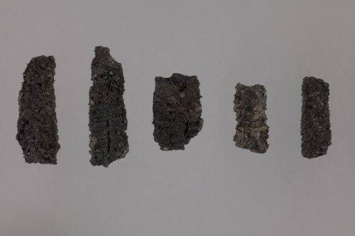 Burned Corn Cobs from Hard Chief's Village, 14SH301 - Page