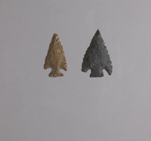Corner Notched Arrow Points from the Forrest Site, 14PA303 - Page