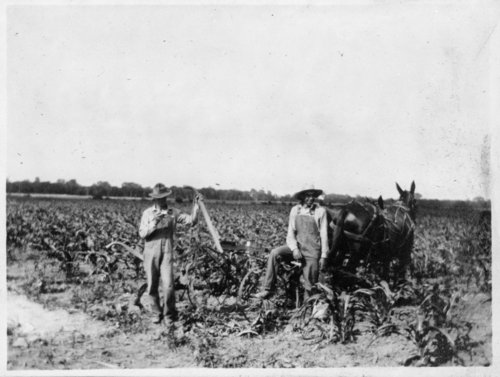 Two men plowing a field with a team, Shawnee County, Kansas - Page