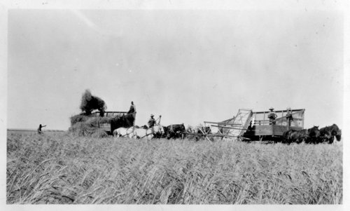 Ford Brown threshing crew, Lane County, Kansas - Page