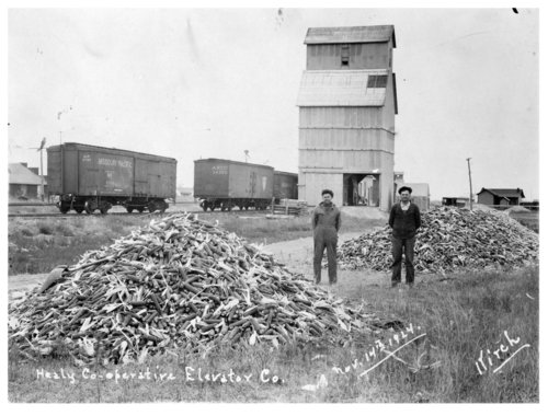 Healy Cooperative Elevator Company, Healy, Lane County, Kansas - Page