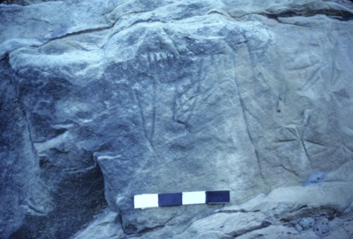 Petroglyphs from the Roth Site - Page