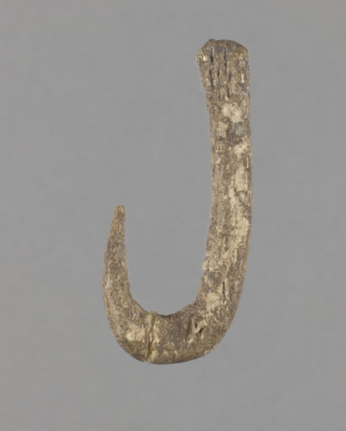 Bone Fish Hook from the Kansas River Valley - Page