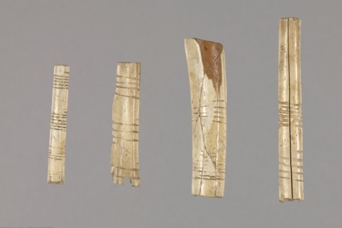 Bird Bone Beads from the Curry Site, 14GR301 - Page
