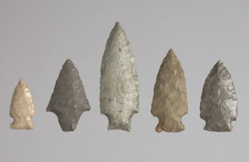 Projectile Points from Lyon County - Page