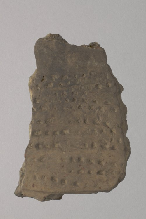 Dentate Stamped Pottery Sherd from the Oliphant Site, 14LT316 - Page