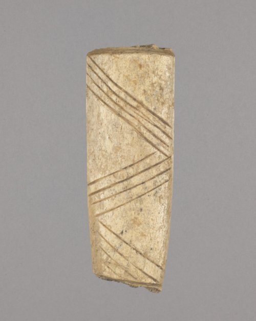 Decorated Bone Tool from the Thompson Site, 14RC9 - Page