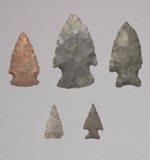 Projectile Points from the Griffing Site, 14RY21 - Page