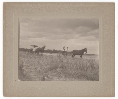 Two horse drawn buggies, Marion County, Kansas - Page