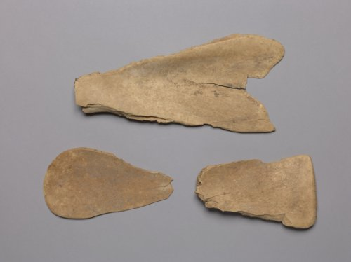 Bison Scapula Hoes from the Tobias Site, 14RC8 - Page