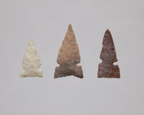Side Notched Arrow Points from Sharps Creek Site, 14MP408 - Page