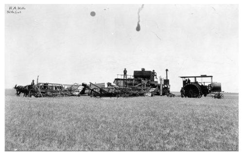 Wheat harvest, Thomas County, Kansas - Page